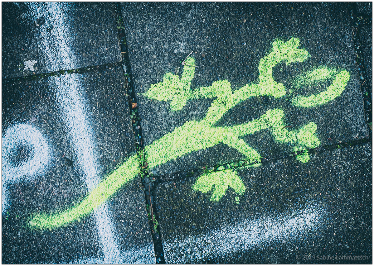 Nie die Bodenhaftung verlieren © 2020 Sabine Lommatzsch