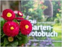 Bellis mit Gartenfotobuch © 2020 Sabine Lommatzsch