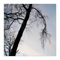 365-Tage-Projekt 68/365 © 2018 Sabine Lommatzsch