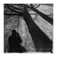 365-Tage-Projekt 79/365 © 2018 Sabine Lommatzsch