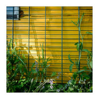 365-Tage-Projekt 140/365 © 2018 Sabine Lommatzsch
