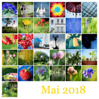 365-Tage-Projekt Mai-Tableau © 2018 Sabine Lommatzsch