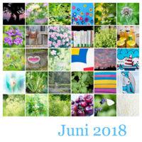 365-Tage-Projekt Juni-Tableau © 2018 Sabine Lommatzsch