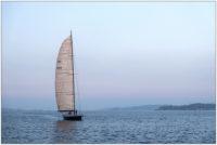 Kieler Förde mit Segelschiff im November © 2020 Sabine Lommatzsch