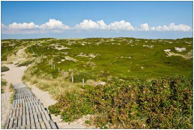 Strandweg durch Dünen auf Sylt © 2009 Sabine Lommatzsch