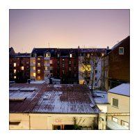 365-Tage-Projekt 21/365 © 2019 Sabine Lommatzsch