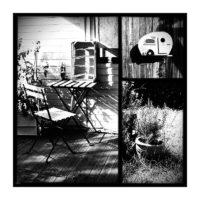 365-Tage-Projekt 182/365 © 2019 Sabine Lommatzsch
