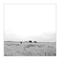 365-Tage-Projekt 190/365 © 2019 Sabine Lommatzsch