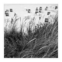365-Tage-Projekt 191/365 © 2019 Sabine Lommatzsch