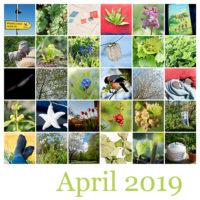 365-Tage-Projekt April-Tableau © 2019 Sabine Lommatzsch