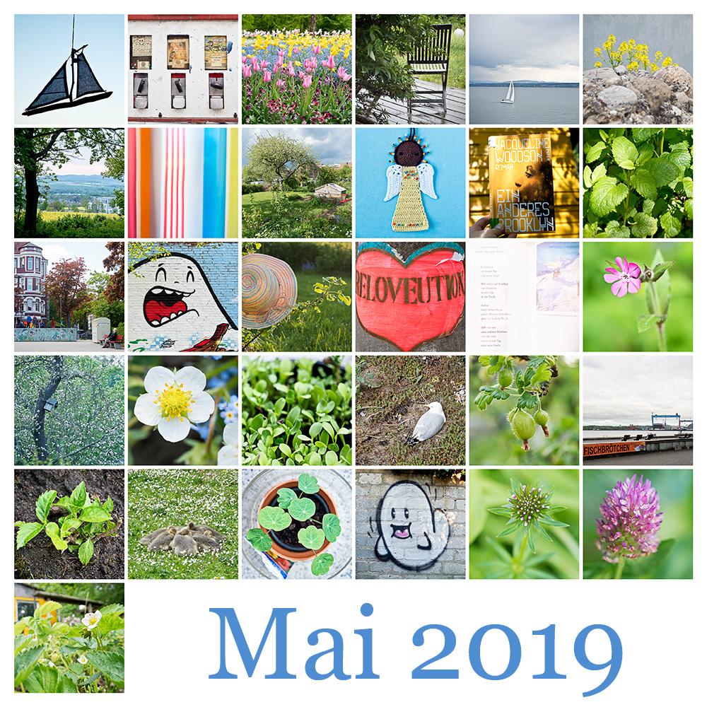 365-Tage-Projekt Mai-Tableau © 2019 Sabine Lommatzsch