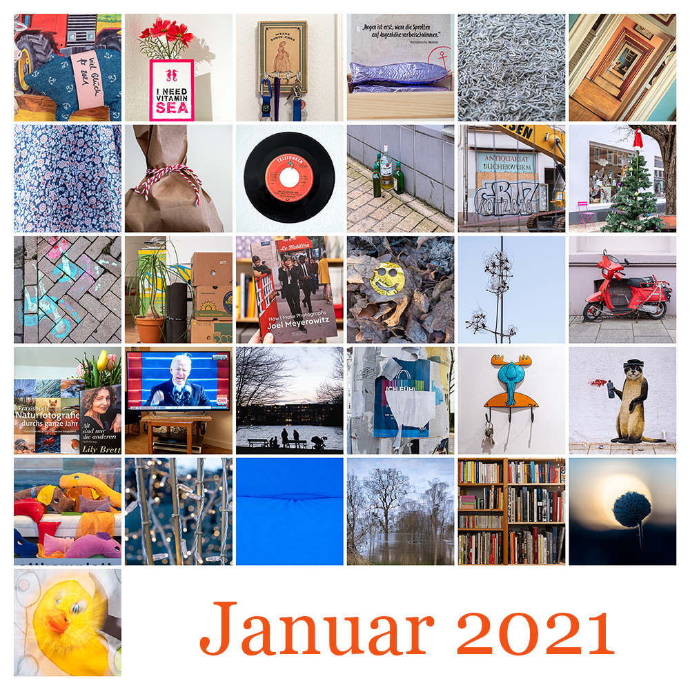 365-Tage-Projekt Januar-Tableau © 2021 Sabine Lommatzsch