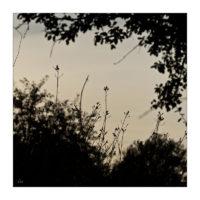 365-Tage-Projekt 234/365 © 2019 Sabine Lommatzsch