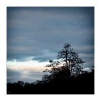 365-Tage-Projekt 331/365 © 2018 Sabine Lommatzsch