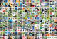 365-Tage-Projekt Jahres-Tableau © 2019 Sabine Lommatzsch