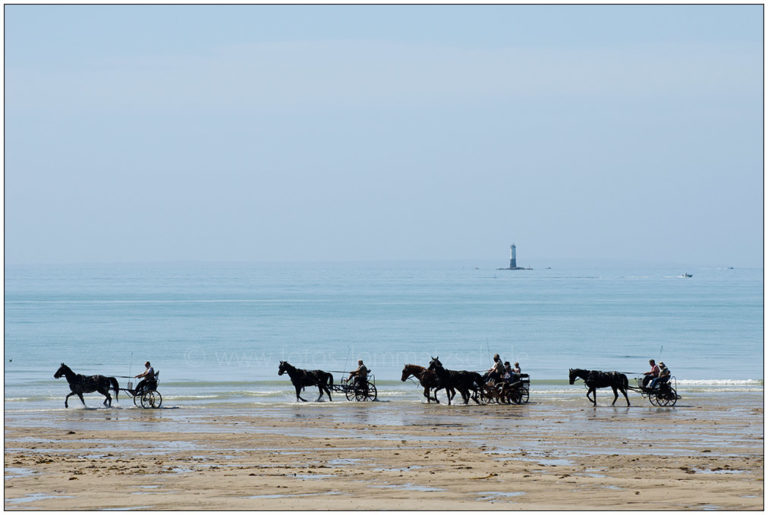Pferde am Strand von Blainville-sur-Mer © 2011 Sabine Lommatzsch
