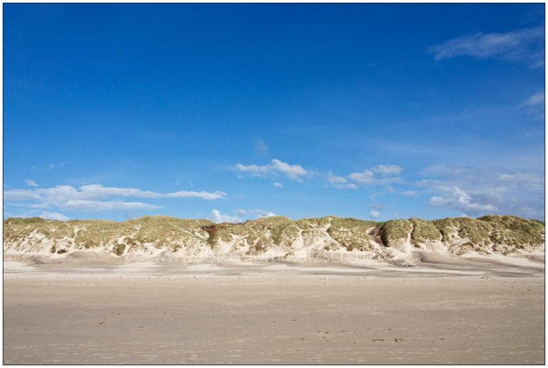 Dünen von Vejers Strand in Dänemark © 2016 Sabine Lommatzsch