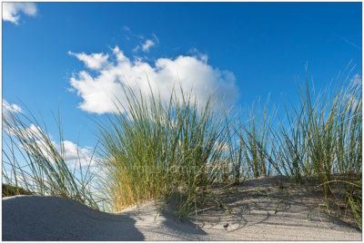 Am Strand von Kalifornien © 2017 Sabine Lommatzsch